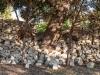 Pietre e muretti a secco - Masseria Farache